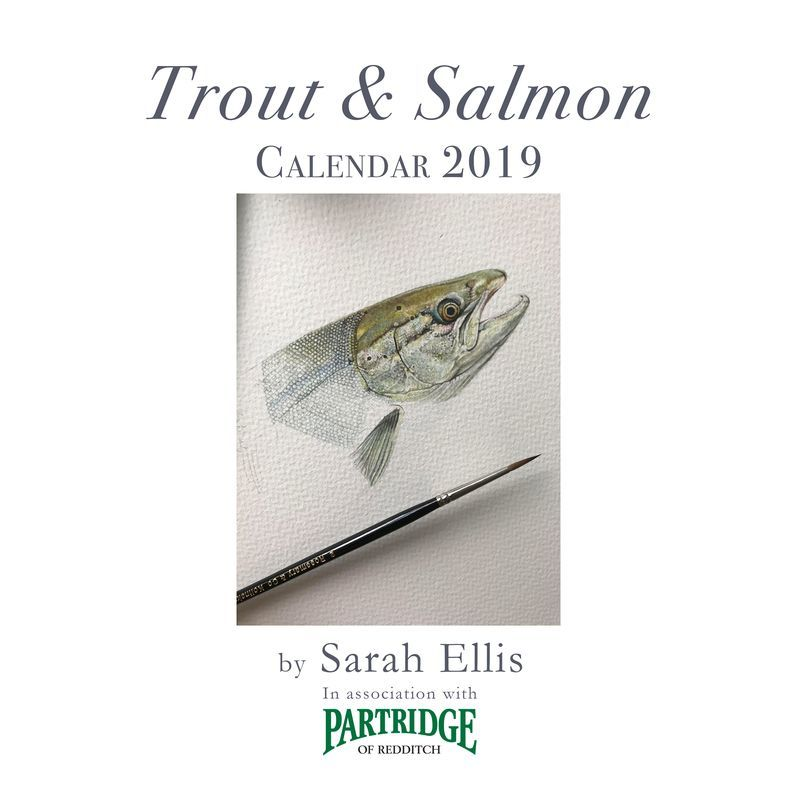 2019 illustrated calendar available