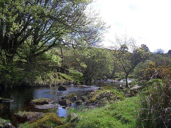 Mike Weaver Headlines Dartmoor
