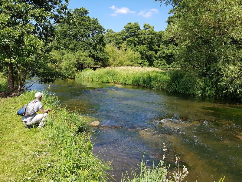 Derbyshire Wye Trout Fishing Weekend for WTT Members