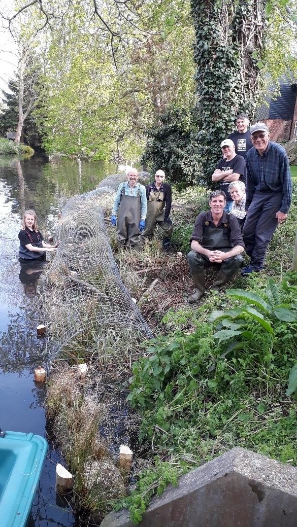 Wheathampstead River Lee habitat works