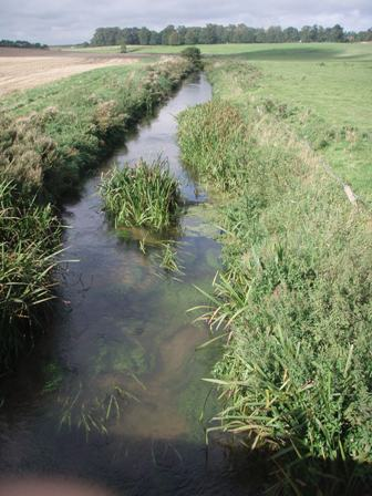 Impoversihed in-stream habitat in the straightened channel of River Stiffkey