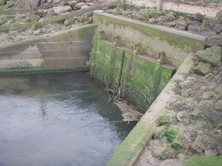 Structures to control the river and tidal flows are barriers to fish migration (tidal flap gates, River Stiffkey)
