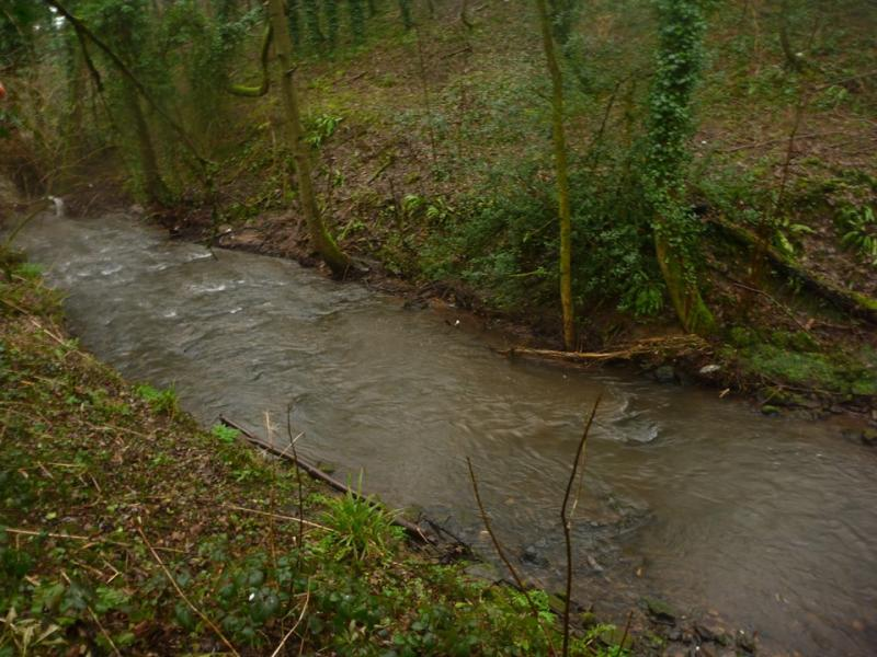Radstock Wellow Brook