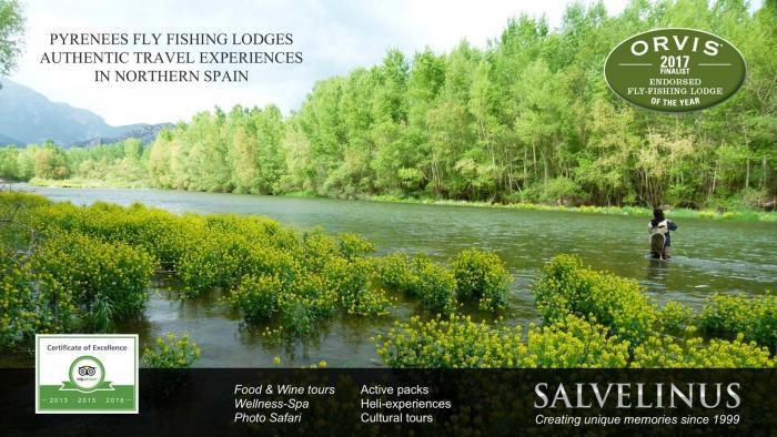 Salvelinus