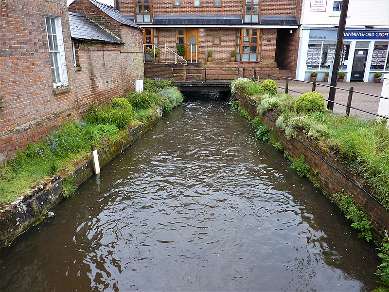 Trout in the Town: A New Chapter for Pewsey