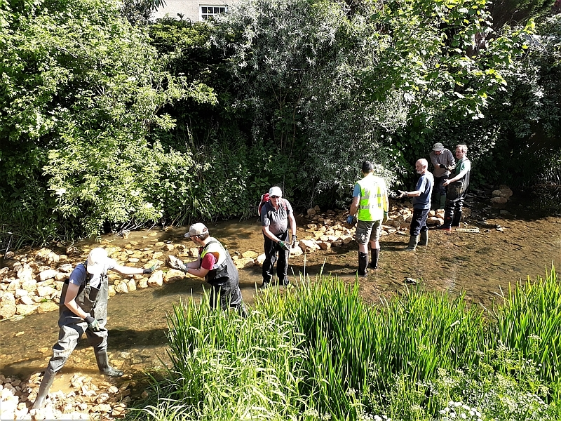 TWIST: Do you want to help look after urban rivers in Somerset?