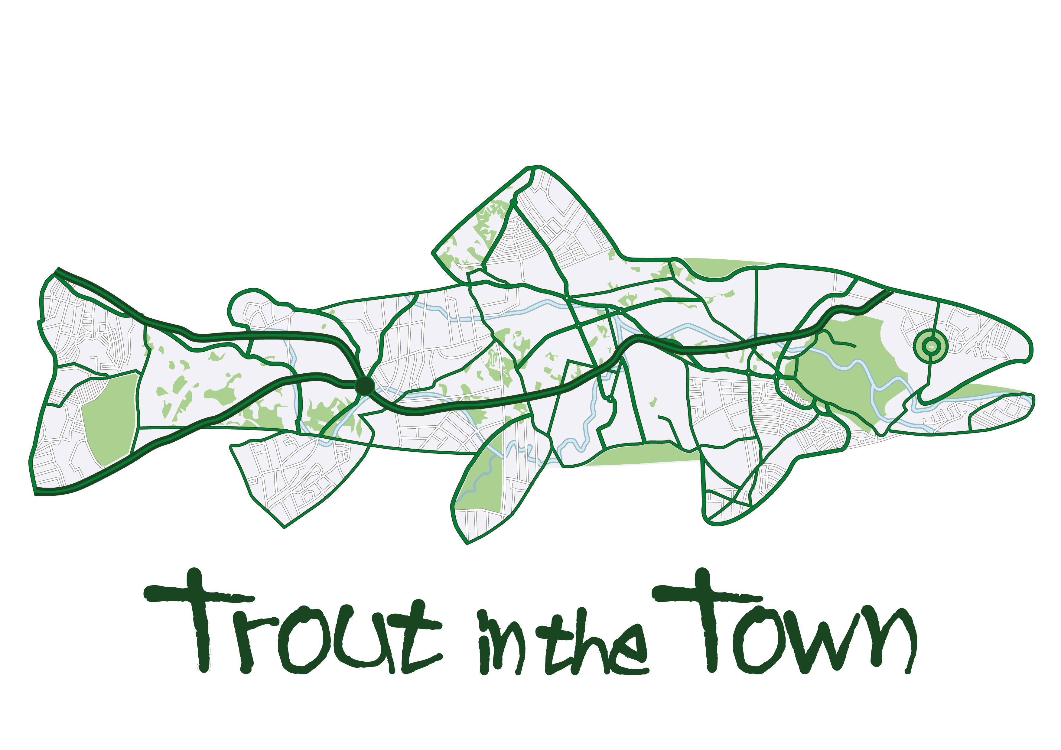 Trout in the Town: have you got your official accreditation yet?