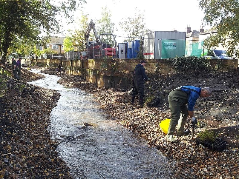 Rivers & Wetlands Community Days