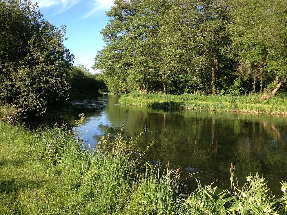 Chalkstream lots with no bids in the auction