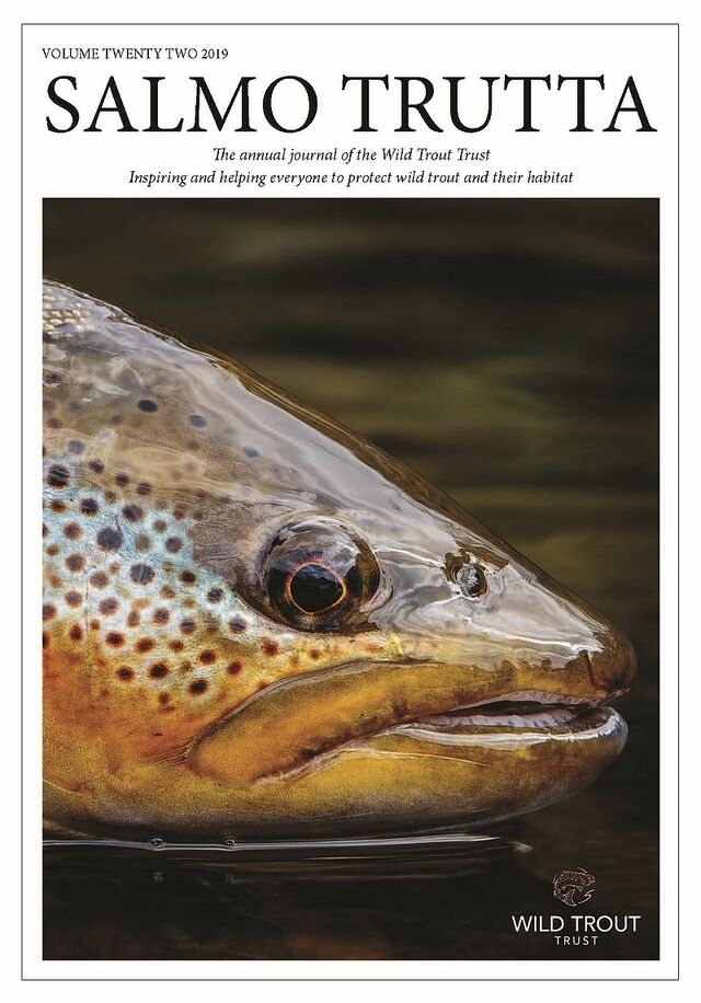 Salmon Trutta 2019 COVER comp