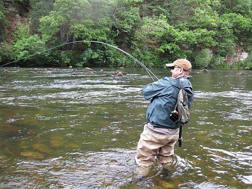 Wild Trout Fishing | Wild Trout Trust