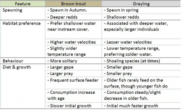 Grayling & Trout | Wild Trout Trust