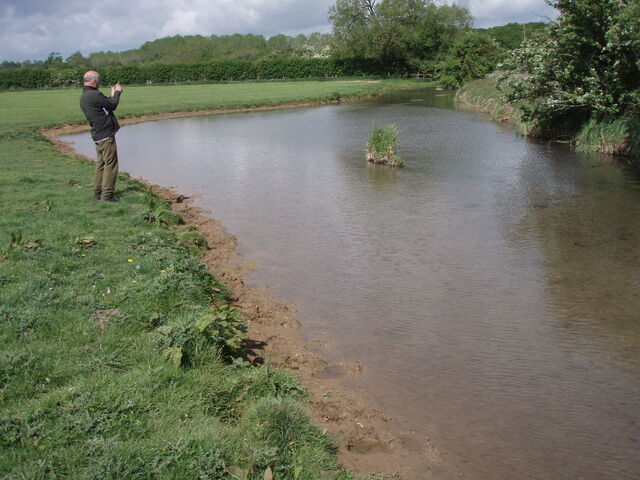 Cattle Poaching Sherborne Brook May 2011